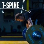 The T-Spine